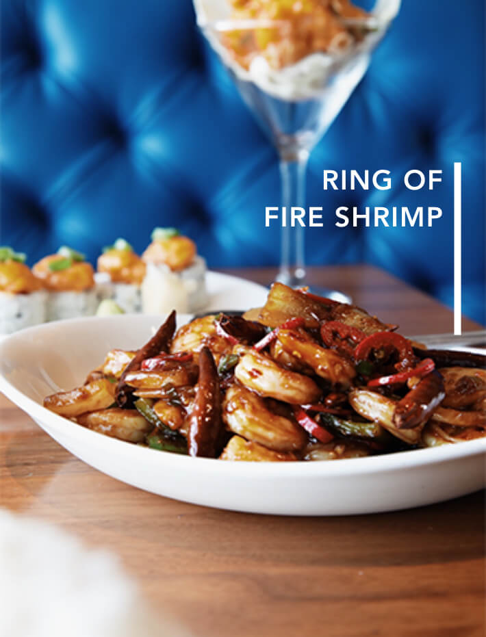 Ring Of Fire Shrimp